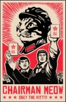 Obey the Kitty!