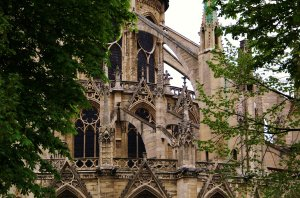 Notre Dame Buttresses