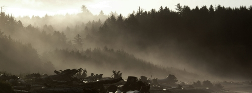 La Push Fog